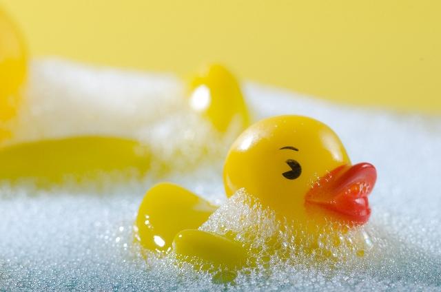 お風呂、アヒル